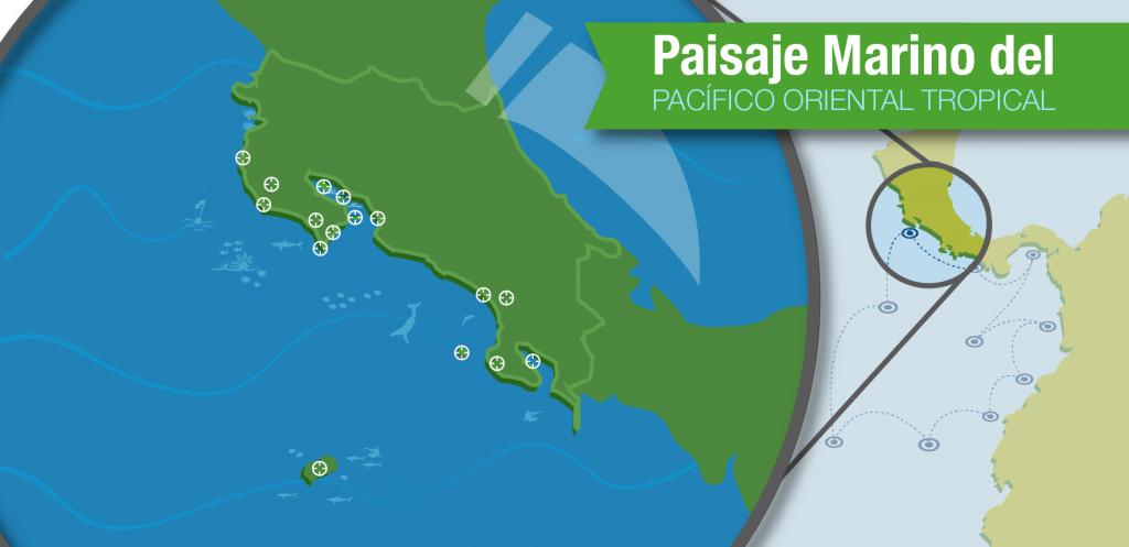 Costa Rica es parte del Paisaje Marino del Pacífico Oriental Tropical