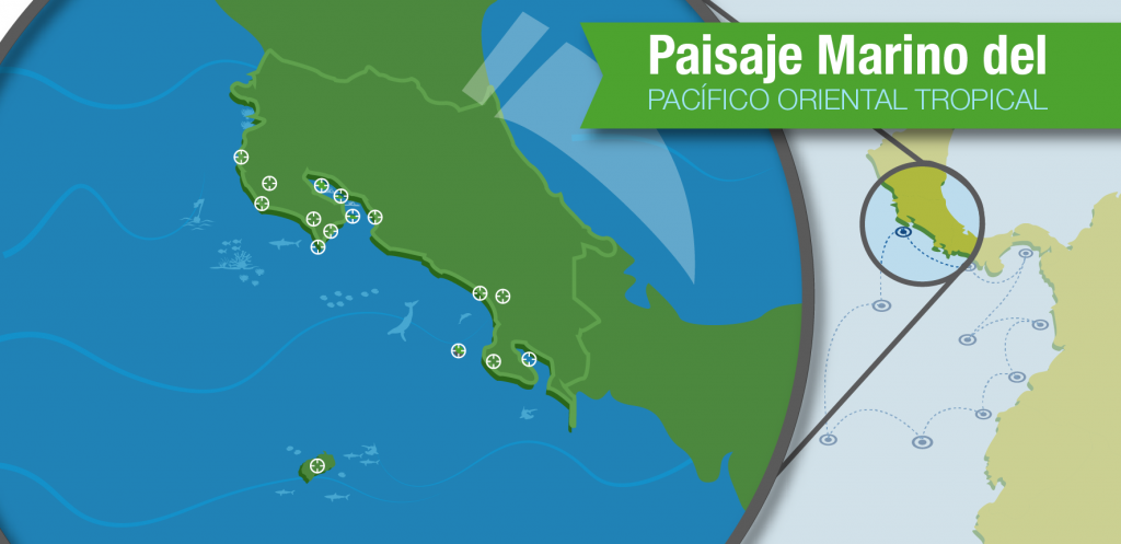 Costa Rica is part of the Eastern Tropical Pacific Seascape