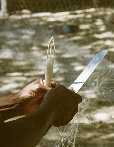 Miles de trabajos dependen de la salud y productividad del Paisaje Marino del Pacífico Oriental Tropical