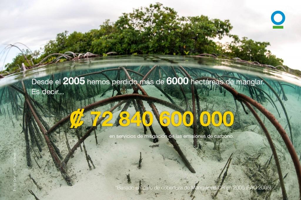 No solo la pesca descontrolada, si no la destrucción de todos nuestros recursos marinos.