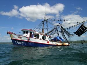 En un barco camaronero